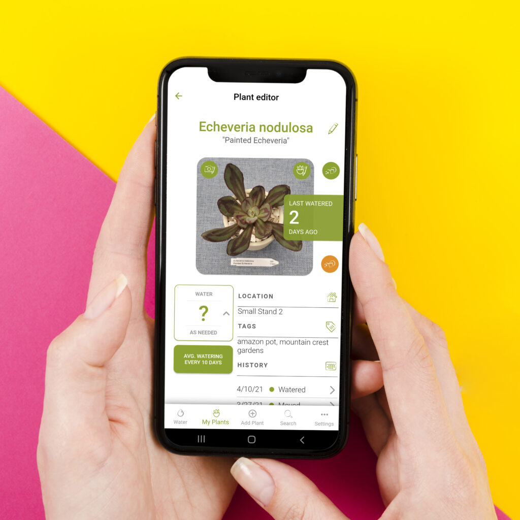 hands holding phone with succulent tracker app